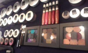 edi minerals makeup set