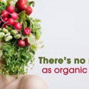organic-hair-wide